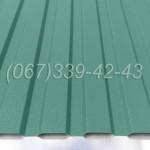 Профнастил матовый Зеленый RAL 6005 профлист, металлопрофиль | Купить, заказать, цена Винница