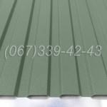 Профнастил матовый Зеленый RAL 6020 профлист, металлопрофиль | Купить, заказать, цена Винница